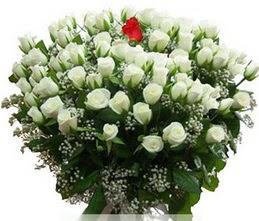 Artvin internetten çiçek satışı  100 adet beyaz 1 adet kirmizi gül buketi