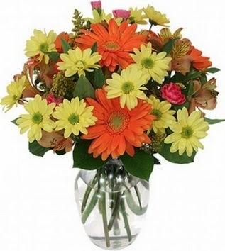 Artvin hediye sevgilime hediye çiçek  vazo içerisinde karışık mevsim çiçekleri