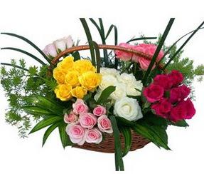 Artvin ucuz çiçek gönder  35 adet rengarenk güllerden sepet tanzimi