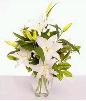 Artvin çiçek gönderme  2 dal cazablanca vazo çiçeği