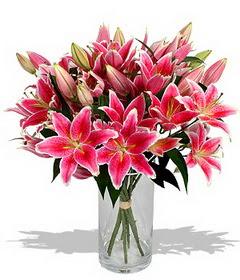 4 dal cazablanca görsel vazosu  Artvin çiçekçi mağazası