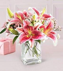 2 dal kazablanka görsel vazosu  Artvin çiçek siparişi sitesi