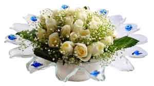 Artvin çiçek online çiçek siparişi  11 adet Beyaz güller özel cam tanzim