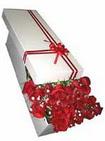 Artvin çiçekçi telefonları  11 adet 1.kalite magnum güller