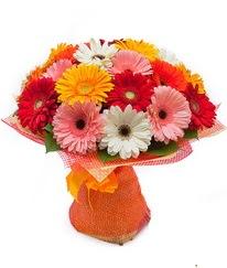 Renkli gerbera buketi  Artvin anneler günü çiçek yolla
