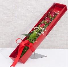 Kutu içerisinde 3 adet kırmızı gül  Artvin online çiçek gönderme sipariş