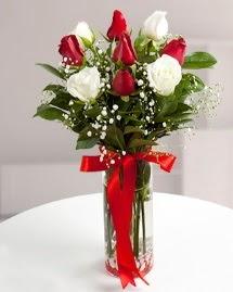 5 kırmızı 4 beyaz gül vazoda  Artvin cicekciler , cicek siparisi