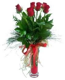 vazo içerisinde 5 kırmızı gül  Artvin güvenli kaliteli hızlı çiçek