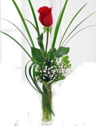 Cam içerisinde 1 kırmızı gül  Artvin çiçek gönderme sitemiz güvenlidir