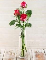 Cam içerisinde 3 kırmızı gül  Artvin çiçek satışı