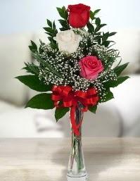Camda 2 kırmızı 1 beyaz gül  Artvin ucuz çiçek gönder
