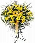 Artvin yurtiçi ve yurtdışı çiçek siparişi  Sari kazablanka Ferforje