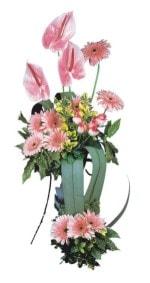 Artvin güvenli kaliteli hızlı çiçek  Pembe Antoryum Harikalar Rüyasi