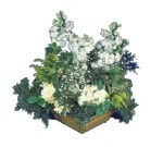 Artvin çiçek siparişi vermek  Beyaz sebboy ve gül aranjmani