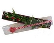 Artvin hediye çiçek yolla  3 adet gül.kutu yaldizlidir.