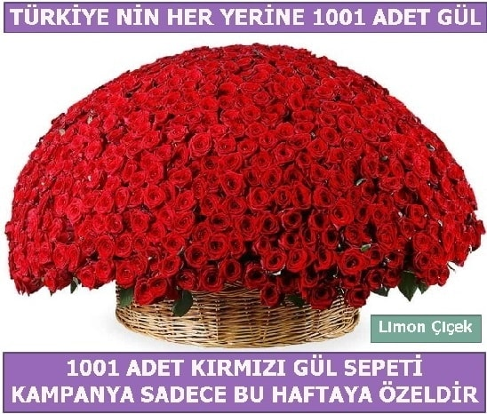 1001 Adet kırmızı gül Bu haftaya özel  Artvin İnternetten çiçek siparişi