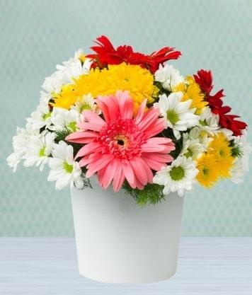 Seramik Vazoda Gelbera ve Papatya  Artvin çiçek gönderme