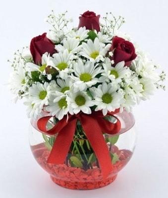 Fanusta 3 Gül ve Papatya  Artvin internetten çiçek satışı