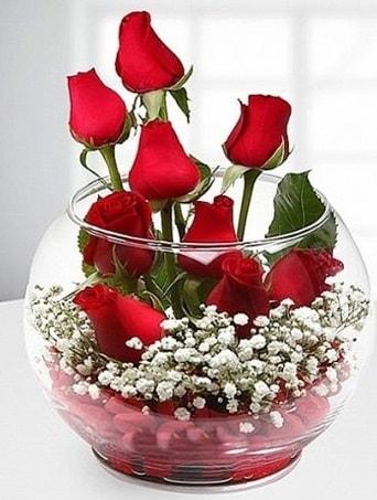 Kırmızı Mutluluk fanusta 9 kırmızı gül  Artvin çiçek siparişi sitesi