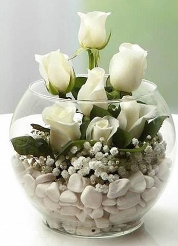 Beyaz Mutluluk 9 beyaz gül fanusta  Artvin çiçek siparişi sitesi