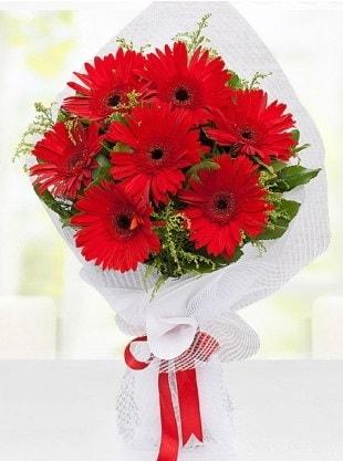 Kırmızı Gelbera Buketi  Artvin internetten çiçek siparişi