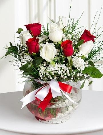 Aşk Küresi  5 beyaz 5 kırmızı gül fanusta  Artvin internetten çiçek satışı