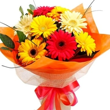 9 adet karışık gerbera buketi  Artvin çiçek , çiçekçi , çiçekçilik