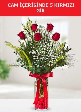 Cam içerisinde 5 adet kırmızı gül  Artvin çiçek siparişi sitesi