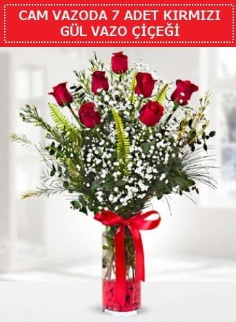 Cam vazoda 7 adet kırmızı gül çiçeği  Artvin çiçek gönderme sitemiz güvenlidir