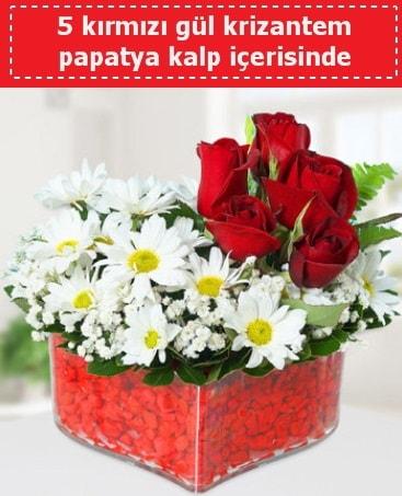 mika kalp içerisinde 5 kırmızı gül papatya  Artvin çiçek gönderme