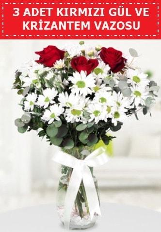 3 kırmızı gül ve camda krizantem çiçekleri  Artvin çiçek gönderme
