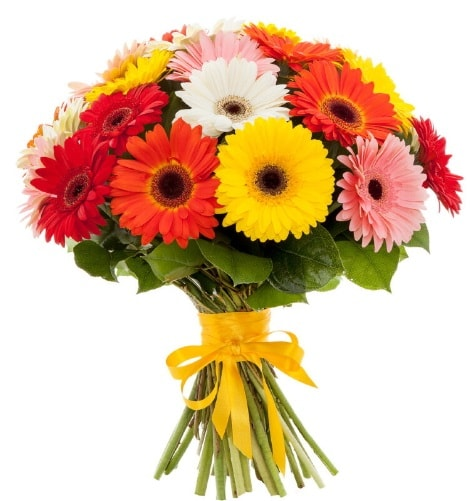 Gerbera demeti buketi  Artvin çiçek satışı