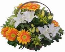 Artvin online çiçekçi , çiçek siparişi  sepet modeli Gerbera kazablanka sepet