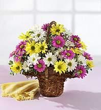 Artvin çiçekçiler  Mevsim çiçekleri sepeti